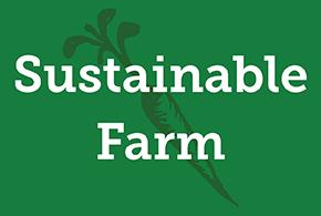 Rosasharn Farm CSA