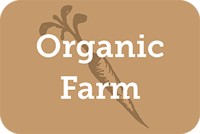 Web of Life Organic Farm