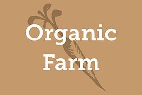 Puddingstone Organics