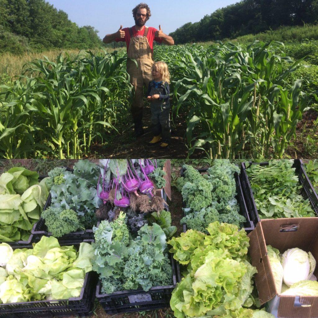 Abundance Family Farm