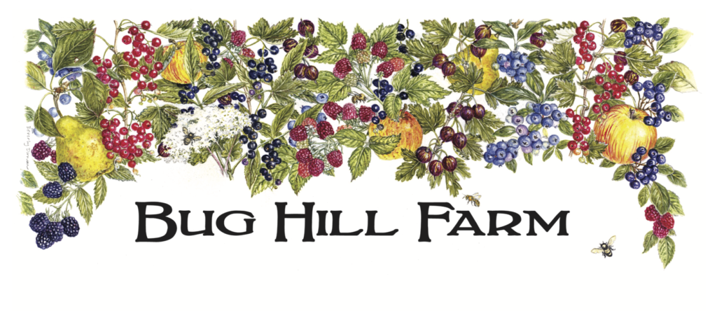 Bug Hill Farm